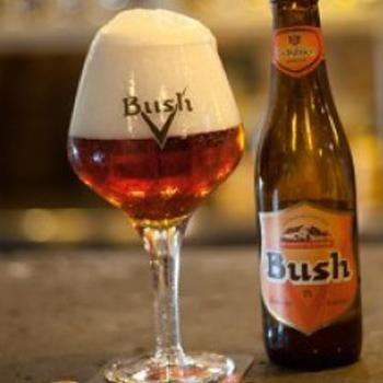 bia Bush