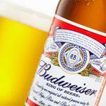 Có Bao Nhiêu Loại Bia Budweiser Đang Bán Ở Việt Nam ?