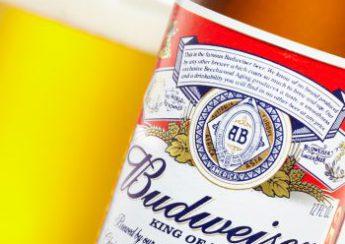 Có Bao Nhiêu Loại Bia Budweiser Đang Bán Ở Việt Nam